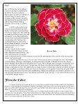 Volume 3 in PDF Format - Paul Zimmerman Roses - Page 6
