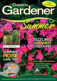 SIZZLING SUMMER - Dawson's Garden World