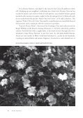 Species Roses at La Bonne Maison - Heritage Rose Foundation - Page 3