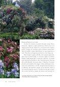 Species Roses at La Bonne Maison - Heritage Rose Foundation - Page 5