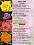 HARDY ROSES - Jeffries Nurseries Ltd. - Page 5
