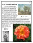 Volume 4 in PDF Format - Paul Zimmerman Roses - Page 7