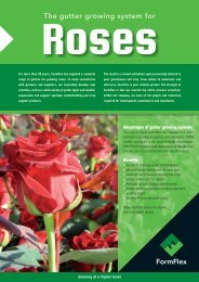 Roses - FormFlex