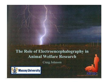 The Role of Electroencephalography in Animal Welfare Research