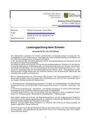 Ergebnisbericht 2011 - Sächsisches Staatsministerium für Umwelt ...