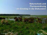 Naturschutz und Flurneuordnung - ein Einstieg ... - Freistaat Sachsen