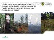 Erhaltung und Nutzung forstgenetischer ... - Freistaat Sachsen