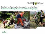 Erholung im Wald und Forstwirtschaft – eine Hassliebe? Gedanken ...