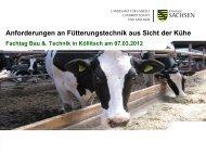 Anforderungen an Fütterungstechnik aus Sicht der Kühe