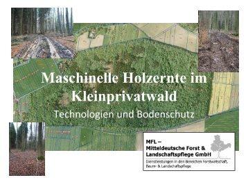 Maschinelle Holzernte im Kleinprivatwald - Technologien und ...