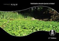 Field Guide to Invasive Species in Ireland