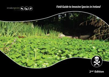 Field Guide to Invasive Species in Ireland