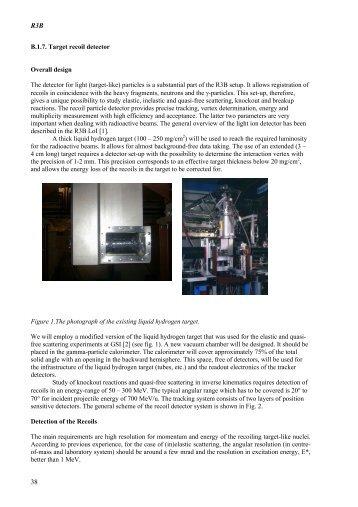 Silicon Recoil detec.. - HEP Group