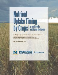 Nutrient Uptake Timing by Crops - Department of Land Resources ...