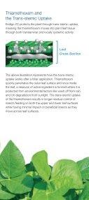 Endigo ZC Soybean Insecticide - Page 3