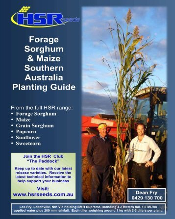 Forage Sorghum & Maize Southern Australia Planting ... - HSR Seeds