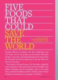 FIVE FOODS THAT COULD SAVE THE WORLD