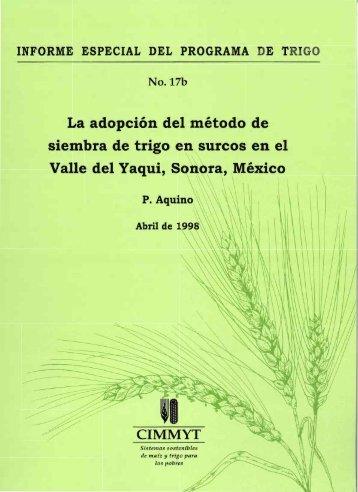 No.l7b La adopción del método de siembra de trigo en ... - CIMMYT