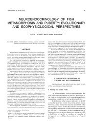 neuroendocrinology of fish metamorphosis and puberty - Journal of ...