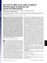 Key roles for MED1 LxxLL motifs in pubertal mammary gland ...