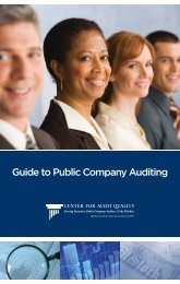 Guide to Public Company Auditing