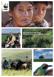 Innovation in Conservation The case of Paraguay's Atlantic - WWF UK