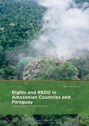 Rights and REDD in Amazonian Countries and Paraguay