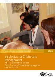 Strategies for Chemicals Management - Sweden Abroad