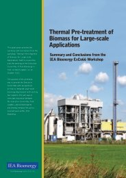Thermal Pre-treatment of Biomass for Large-scale ... - IEA Bioenergy