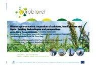 Biomass pre Biomass pre-treatment: separation of cellulose ...