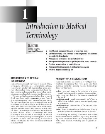 Essay for medical terminology