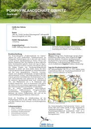 Porphyrlandschaft Gimritz - NABU-Stiftung Nationales Naturerbe