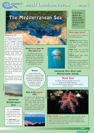 Mediterranean Sea and Black Sea - MarBEF