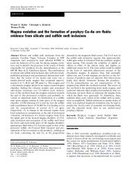 Magma evolution and the formation of porphyry Cu–Au ore fluids ...