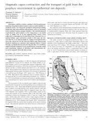 Magmatic vapor contraction and the transport of gold - ETH - IGP ...