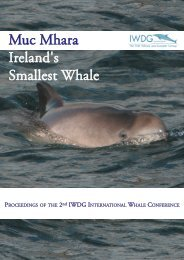 Muc Mhara Ireland's Smallest Whale - Marine Institute Open Access ...
