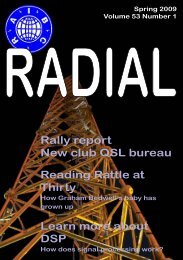 RADIAL cover: SPring 2009 - raibc