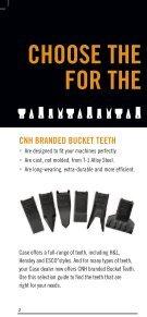Bucket Teeth - Page 2