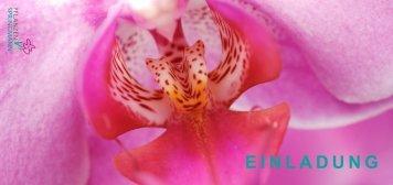 Herzlich Willkommen - Springmann Topfpflanzen