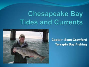 Chesapeake Bay Tides and Currents - Terrapin Bay Fishing