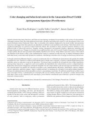 Color changing and behavioral context in the Amazonian Dwarf ...