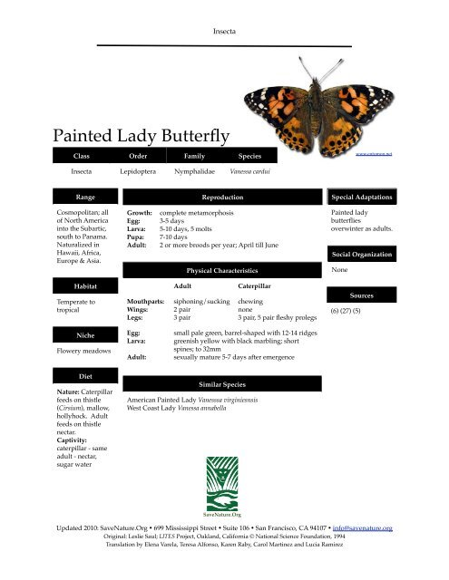 Painted Lady Butterfly info sheet - SaveNature.org