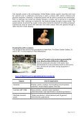 Talc and pyrohyllite - Page 4