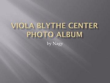Volume 2 - Viola Blythe Community Service Center