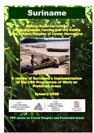 Suriname - Forest Peoples Programme