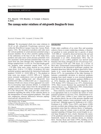 The canopy water relations of old-growth Douglas-fir trees