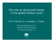 The role of old-growth forest in the global Carbon Cycle