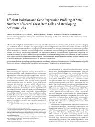 Efficient Isolation and Gene Expression Profiling of Small Numbers ...