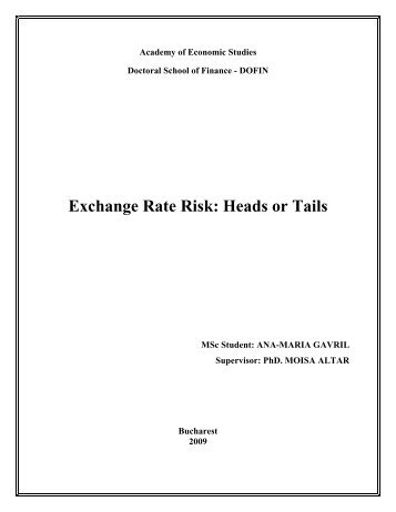 exchange rate risk essay What are the causes of fluctuations in exchange rate  the various theories of exchange rate  essay on the triffin plan and revaluation of gold of.