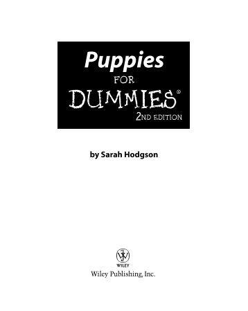 quality assurance for dummies pdf